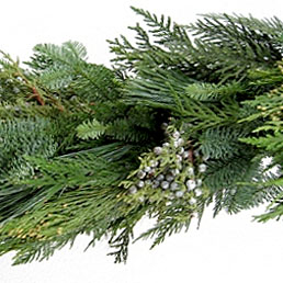 place your order for christmas greens and poinsettias - Christmas Greens